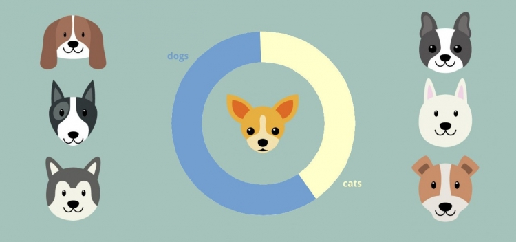 Dog Vs Cats Results
